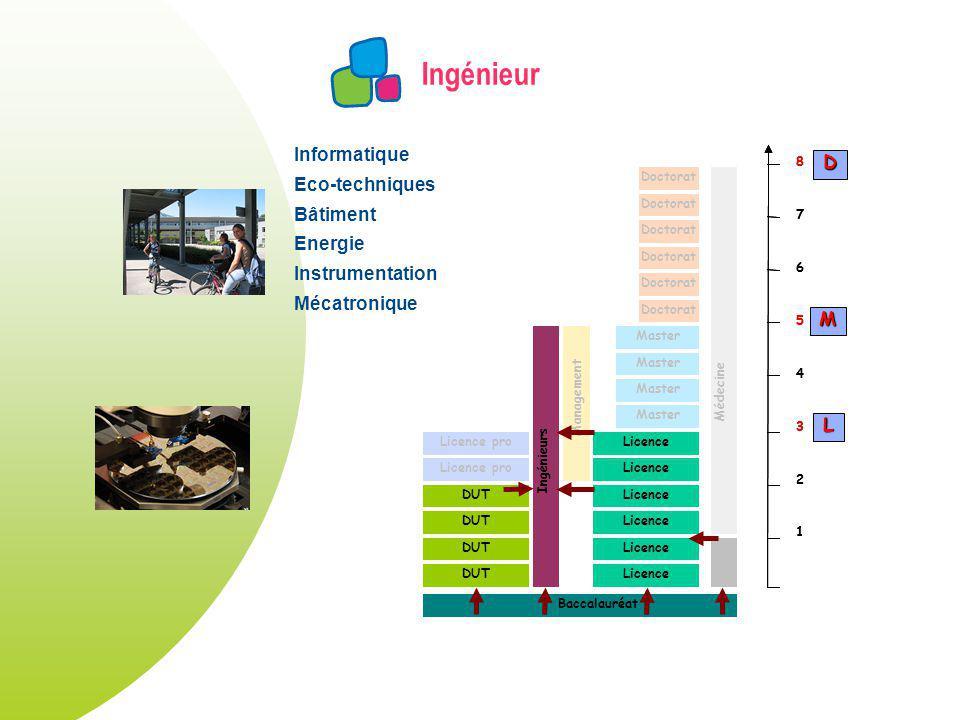 Ingénieur DUT Licence Master Licence pro Doctorat Licence pro Ingénieurs Management Doctorat Médecine Baccalauréat 1 2 3 4 5 6 7 8 1 2 3 4 5 6 7 8 L M