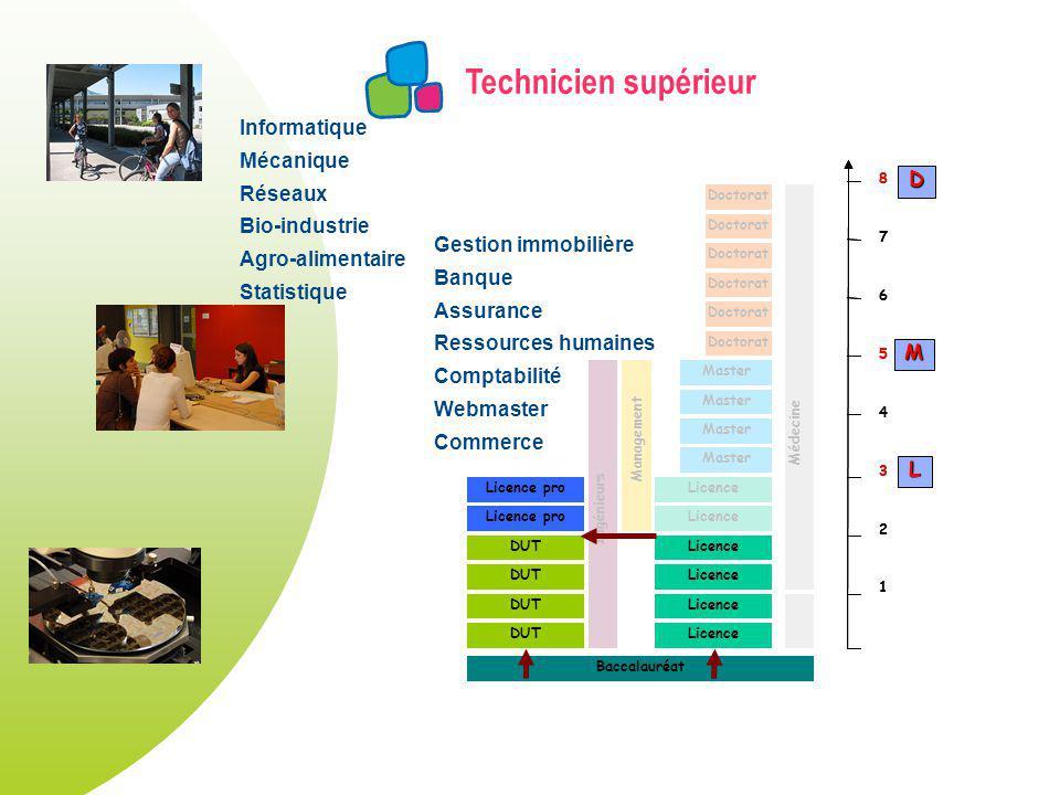 Technicien supérieur DUT Licence Master Licence pro Doctorat Licence pro Ingénieurs Management Doctorat Médecine Baccalauréat 1 2 3 4 5 6 7 8 1 2 3 4