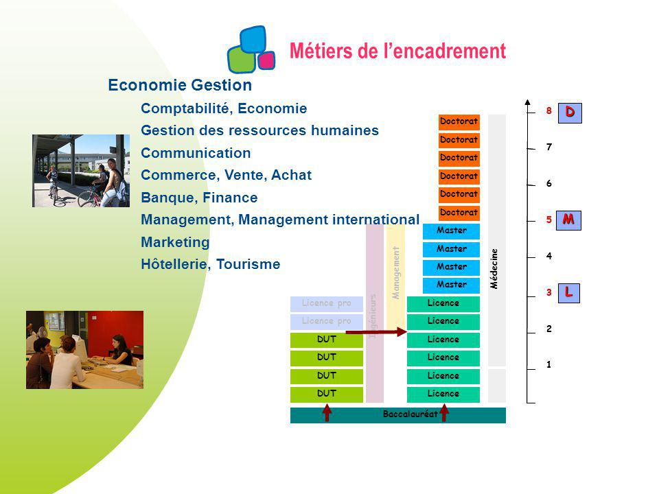 Métiers de lencadrement DUT Licence Master Licence pro Doctorat Licence pro Ingénieurs Management Doctorat Médecine Baccalauréat 1 2 3 4 5 6 7 8 1 2 3