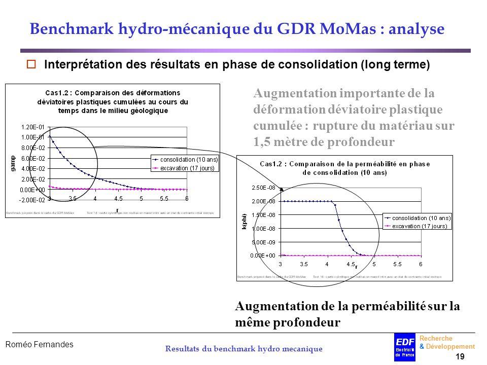 Roméo Fernandes Recherche & Développement 19 Resultats du benchmark hydro mecanique Benchmark hydro-mécanique du GDR MoMas : analyse Interprétation de