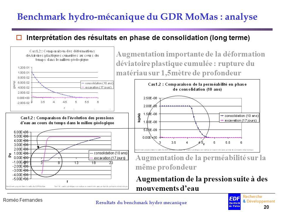 Roméo Fernandes Recherche & Développement 20 Resultats du benchmark hydro mecanique Benchmark hydro-mécanique du GDR MoMas : analyse Interprétation de