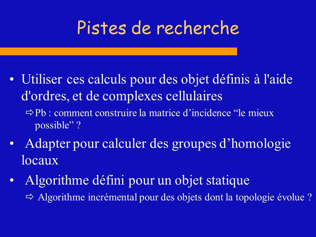 Pistes de recherche Utiliser ces calculs pour des objet définis à l'aide d'ordres, et de complexes cellulaires Pb : comment construire la matrice dinc