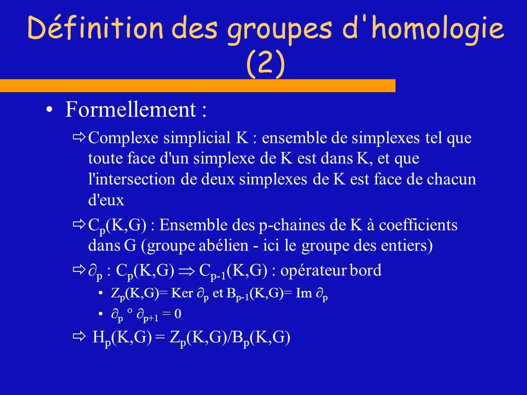 Exemple : bouteille de Klein Triangulation possible : ((1,2,6)(1,4,6)(1,2,9)(1,5,9)(1,3,7)(1,5,7)(1,3,10)(1,4,10)(2,3,6)(2,9,10)( 2,3,10)(3,6,7)(4,5,6)(4,5,10)(5,6,9)(5,7,10)(6,8,9)(6,7,8)(7,8,10)(8,9,10)) Nombres de Betti et torsions : [1 ()] [1 (2(1))] [0 ()] 2 1 1 1 1 2 3 3 5 5 4 4 6 7 8 9 10