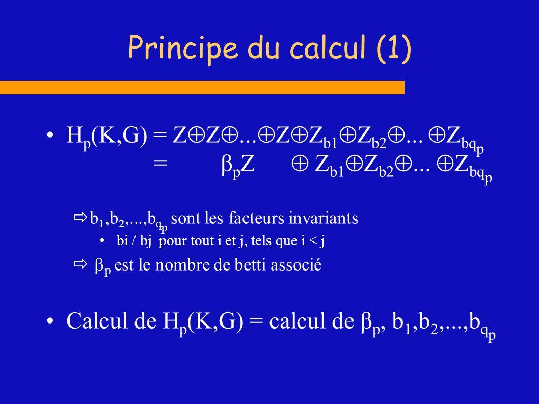 Exemple de torsion sur la bouteille de Klein w = [1,4]+[4,5]+[5,1] soit s 2 la somme de tous les 2-simplexes s 2 = 2 w cycle w = élément de torsion on montre que c = 0 c = n ([1,2]+[2,3]+[3,1]) + mw avec n = 0 et m pair H 1 Z Z 2 1 1 1 1 2 3 3 5 5 4 4 6 7 8 9 10 2
