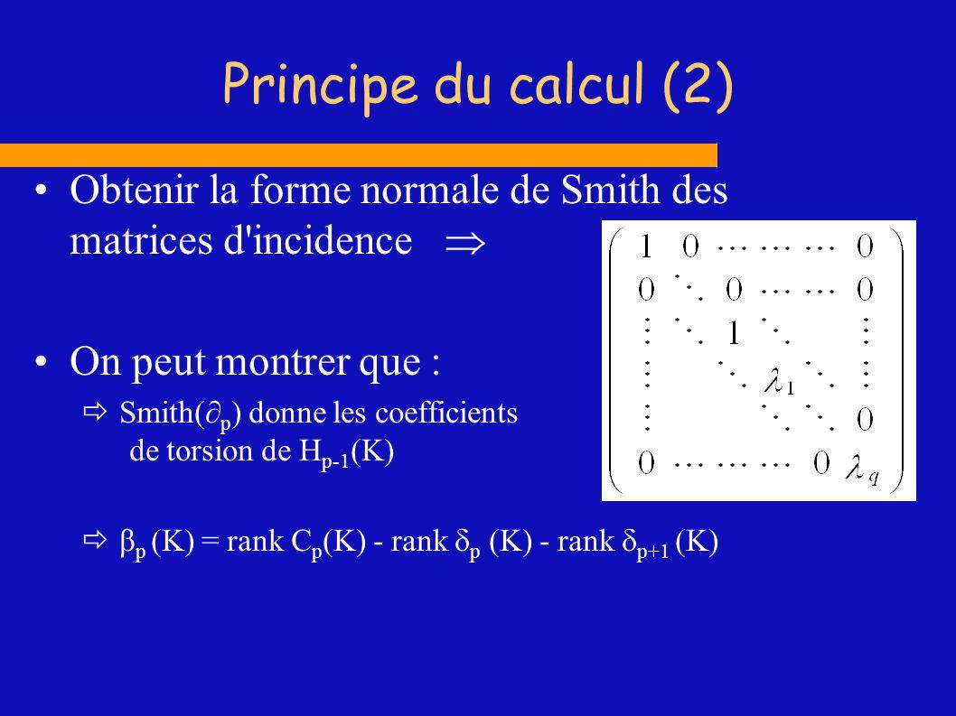 Principe du calcul (3) Problèmes : Réduction d une matrice d entiers À toutes les étapes, on manipule des entiers Les éléments des matrices intermédiaires peuvent devenir très grands Dépassements mémoire Complexité en temps élevée Sujet actif de recherche (algèbre)