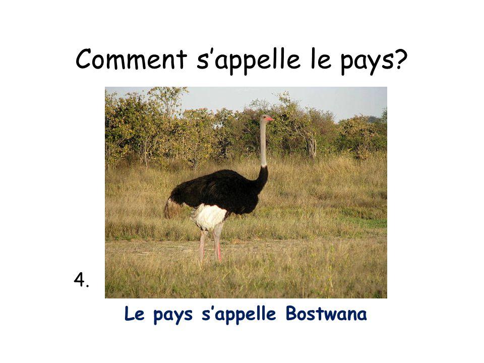 Comment sappelle le pays? 4. Le pays sappelle Bostwana