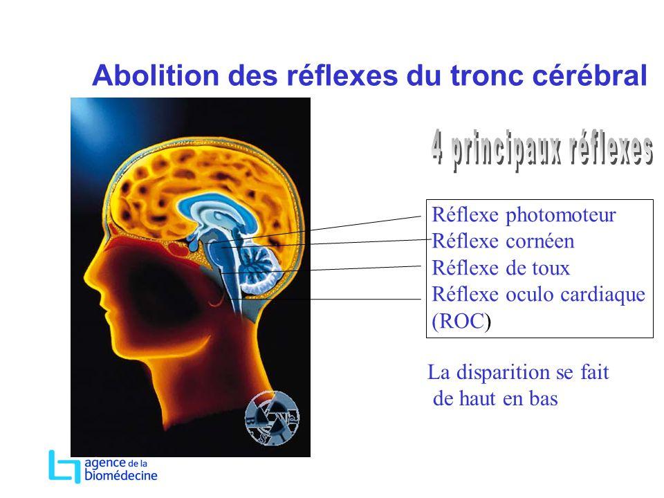 Abolition des réflexes du tronc cérébral Réflexe photomoteur Réflexe cornéen Réflexe de toux Réflexe oculo cardiaque (ROC) La disparition se fait de h
