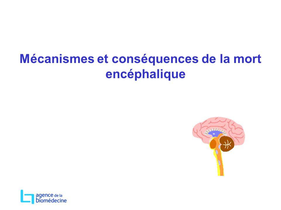 Mécanismes et conséquences de la mort encéphalique