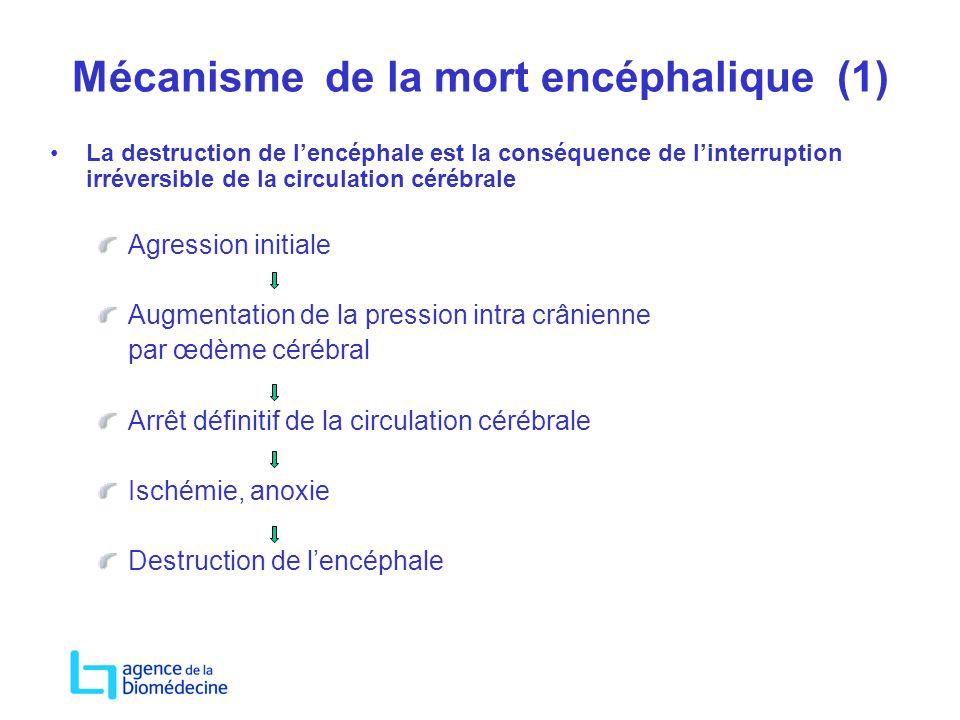 Mécanisme de la mort encéphalique (1) La destruction de lencéphale est la conséquence de linterruption irréversible de la circulation cérébrale Agress