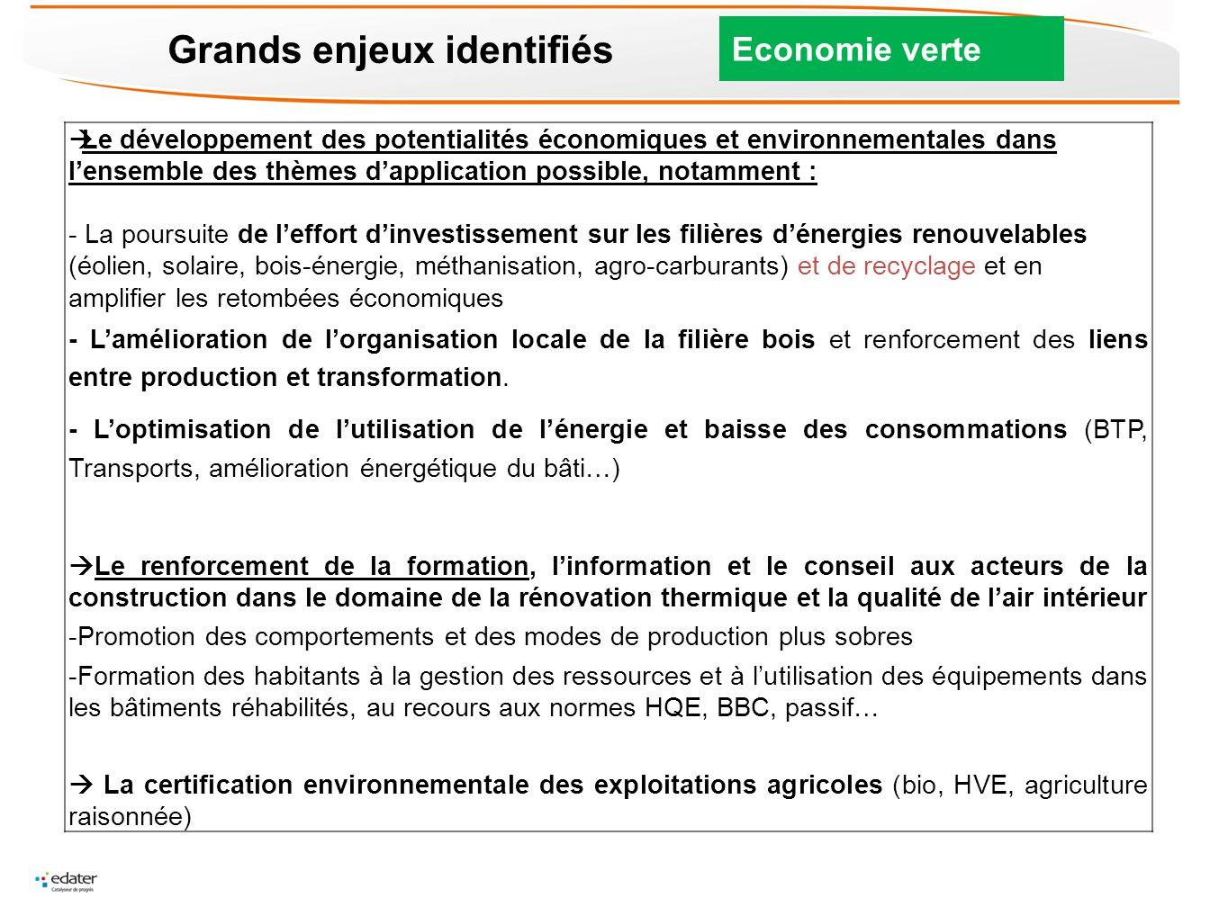 Grands enjeux identifiés Economie verte Le développement des potentialités économiques et environnementales dans lensemble des thèmes dapplication pos