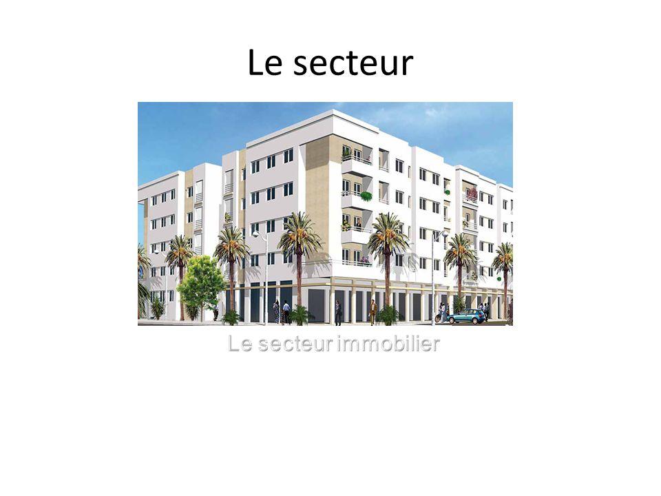 Secteur Le secteur de limmobilier est lun des plus dynamiques du tissu économique marocain.
