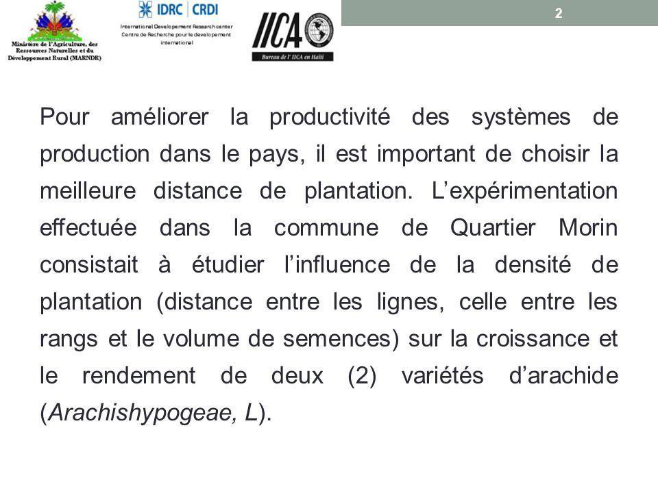 Pour améliorer la productivité des systèmes de production dans le pays, il est important de choisir la meilleure distance de plantation.