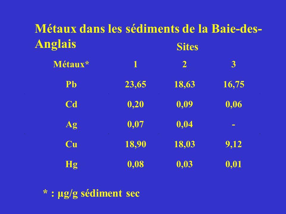 Métaux* 1 2 3 Pb23,6518,6316,75 Cd0,200,090,06 Ag0,070,04- Cu18,9018,039,12 Hg0,080,030,01 * : μg/g sédiment sec Métaux dans les sédiments de la Baie-