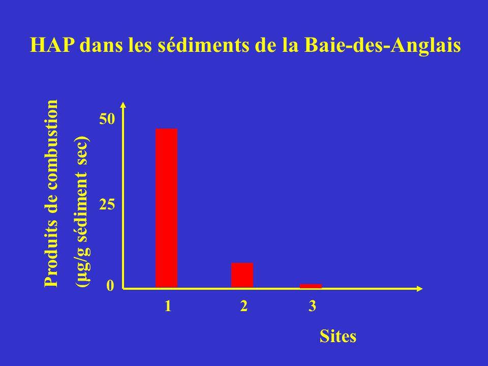 Produits de combustion ( μg/g sédiment sec) Sites 0 50 25 123 HAP dans les sédiments de la Baie-des-Anglais