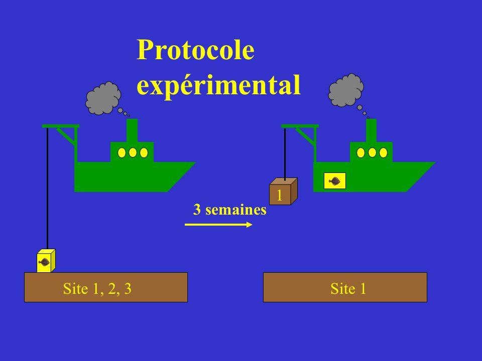 Site 1, 2, 3 Site 1 1 3 semaines Protocole expérimental