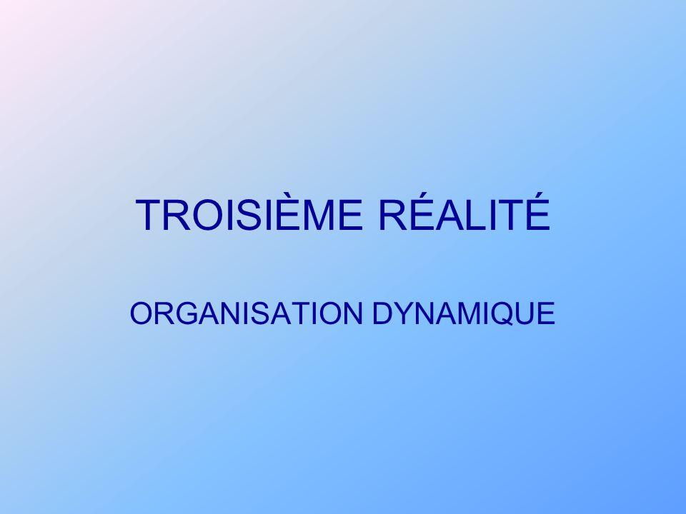 TROISIÈME RÉALITÉ ORGANISATION DYNAMIQUE
