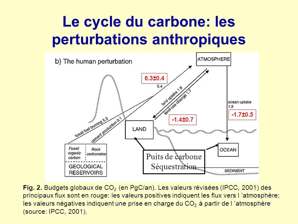 Le cycle du carbone: les perturbations anthropiques Fig. 2. Budgets globaux de CO 2 (en PgC/an). Les valeurs révisées (IPCC, 2001) des principaux flux