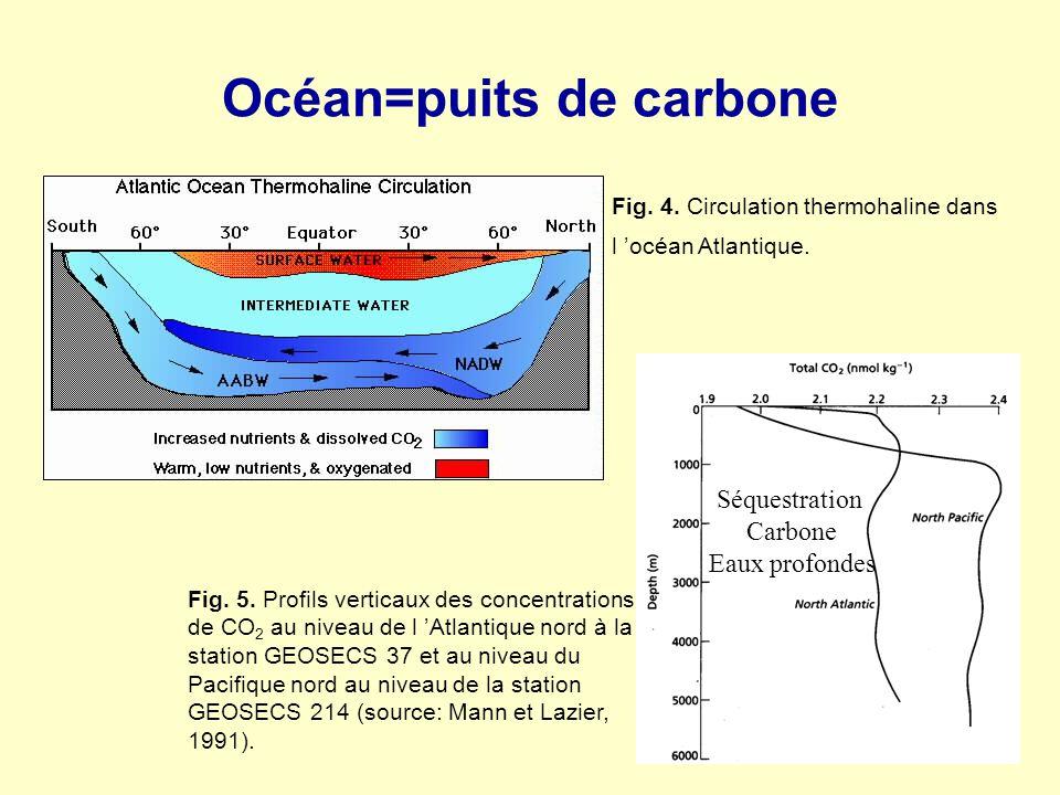 Océan=puits de carbone Fig. 5. Profils verticaux des concentrations de CO 2 au niveau de l Atlantique nord à la station GEOSECS 37 et au niveau du Pac
