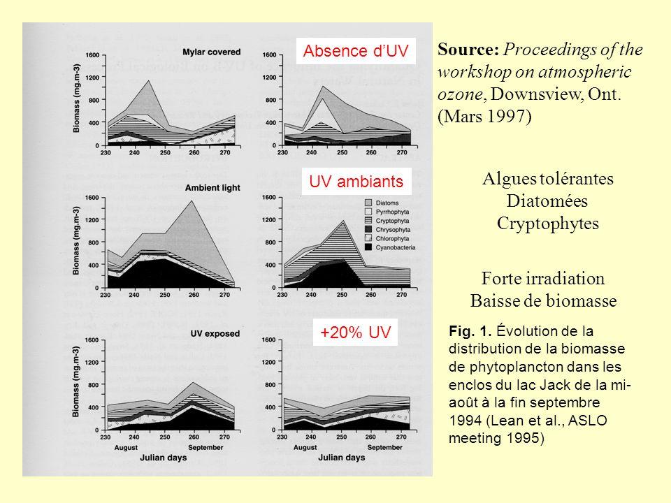 Fig. 1. Évolution de la distribution de la biomasse de phytoplancton dans les enclos du lac Jack de la mi- août à la fin septembre 1994 (Lean et al.,
