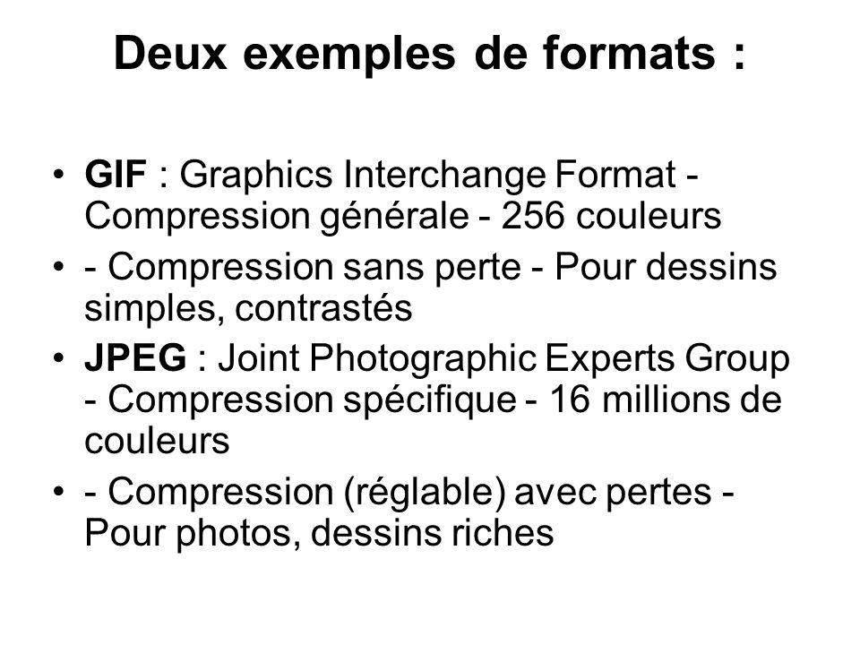 Deux exemples de formats : GIF : Graphics Interchange Format - Compression générale - 256 couleurs - Compression sans perte - Pour dessins simples, co