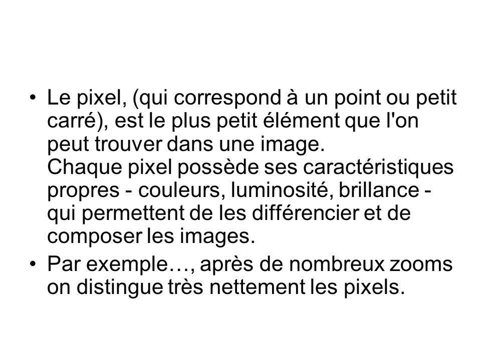 Le pixel, (qui correspond à un point ou petit carré), est le plus petit élément que l'on peut trouver dans une image. Chaque pixel possède ses caracté