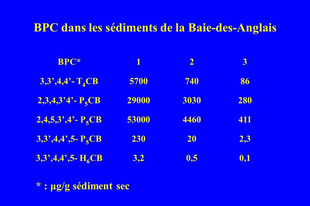 * : μg/g sédiment sec BPC* 1 2 3 3,3,4,4- T 4 CB570074086 2,3,4,34- P 5 CB290003030280 2,4,5,3,4- P 5 CB530004460411 3,3,4,4,5- P 5 CB230202,3 3,3,4,4,5- H 6 CB3,20,50,1 BPC dans les sédiments de la Baie-des-Anglais