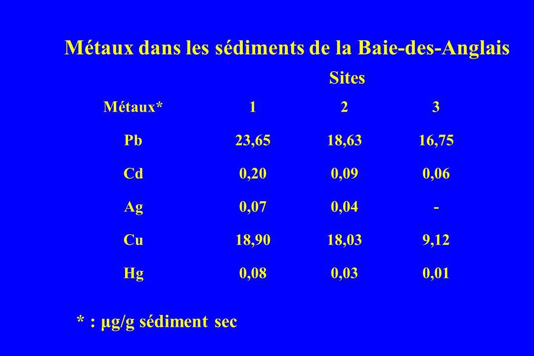 Métaux* 1 2 3 Pb23,6518,6316,75 Cd0,200,090,06 Ag0,070,04- Cu18,9018,039,12 Hg0,080,030,01 * : μg/g sédiment sec Métaux dans les sédiments de la Baie-des-Anglais Sites