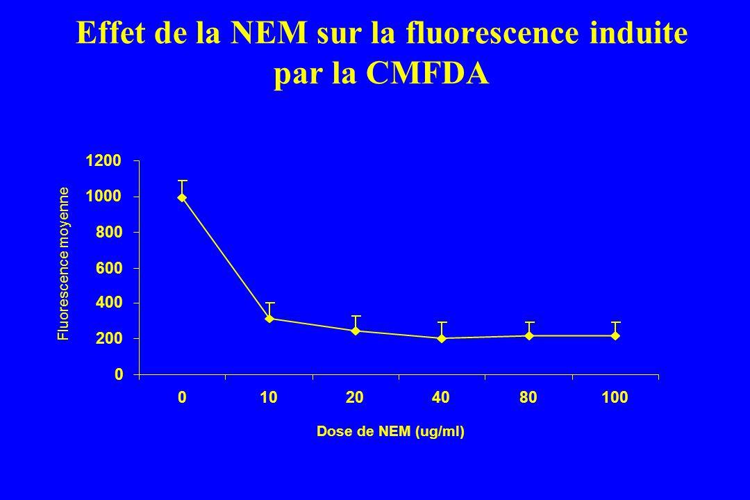 Effet de la NEM sur la fluorescence induite par la CMFDA 0 200 400 600 800 1000 1200 010204080100 Dose de NEM (ug/ml) Fluorescence moyenne