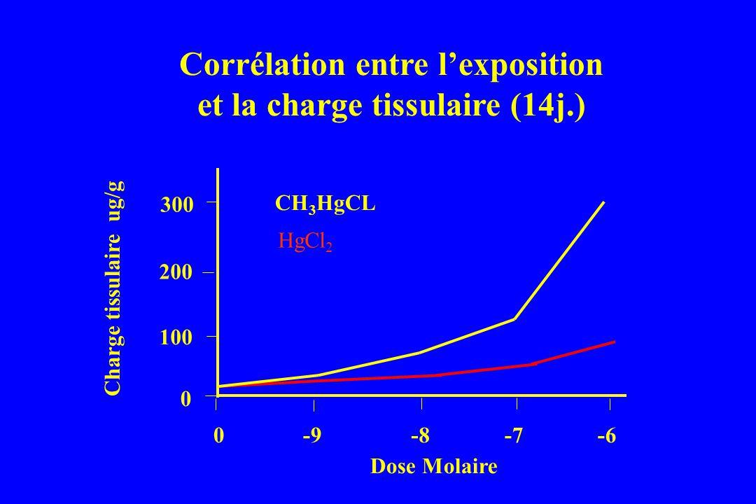 0-9-6 0 200 100 Charge tissulaire ug/g Corrélation entre lexposition et la charge tissulaire (14j.) 300 -7-8 Dose Molaire CH 3 HgCL HgCl 2
