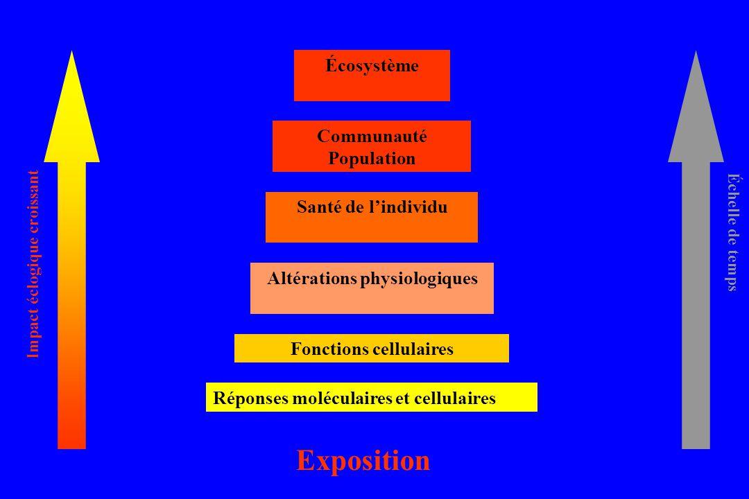 Exposition Fonctions cellulaires Altérations physiologiques Santé de lindividu Communauté Population Écosystème Impact éclogique croissant Échelle de temps Réponses moléculaires et cellulaires