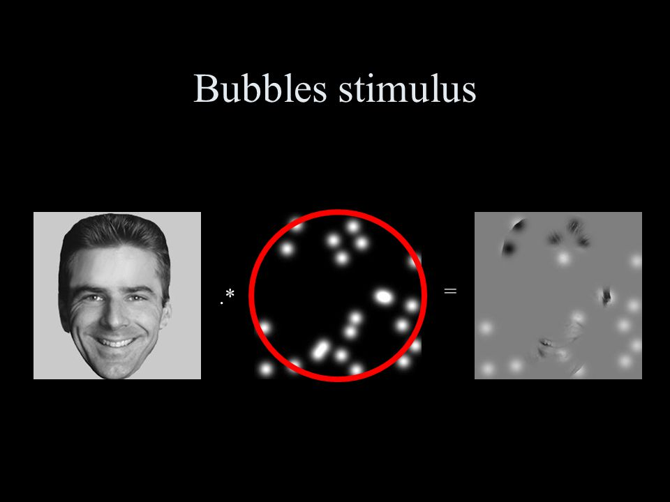 .* = Original imageMask of bubblesStimulus Stimuli creation Bubbles stimulus