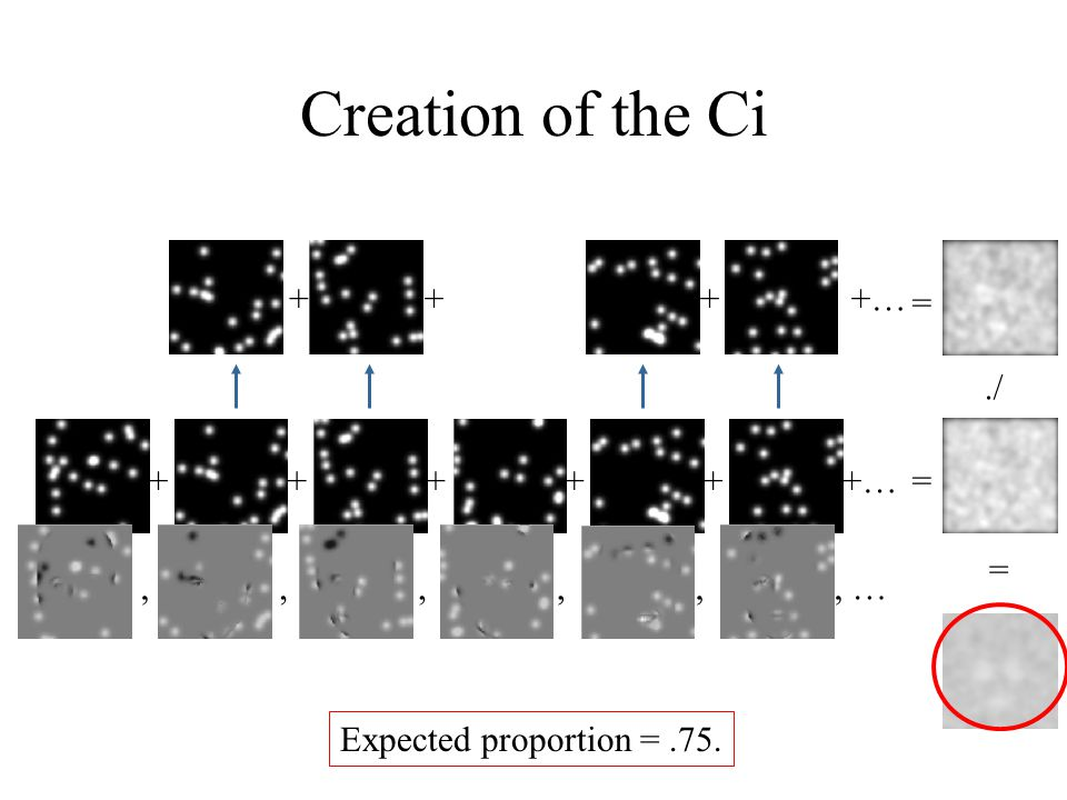 Creation of the Ci +…+++++ Expected proportion =.75. ++++…, …,,,,, ==./ =