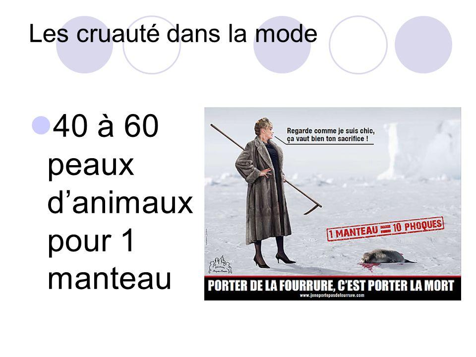 40 à 60 peaux danimaux pour 1 manteau Les cruauté dans la mode
