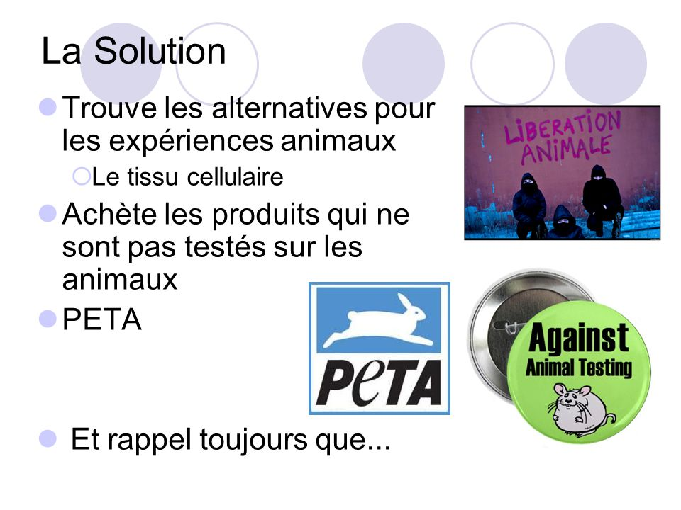 La Solution Trouve les alternatives pour les expériences animaux Le tissu cellulaire Achète les produits qui ne sont pas testés sur les animaux PETA Et rappel toujours que...