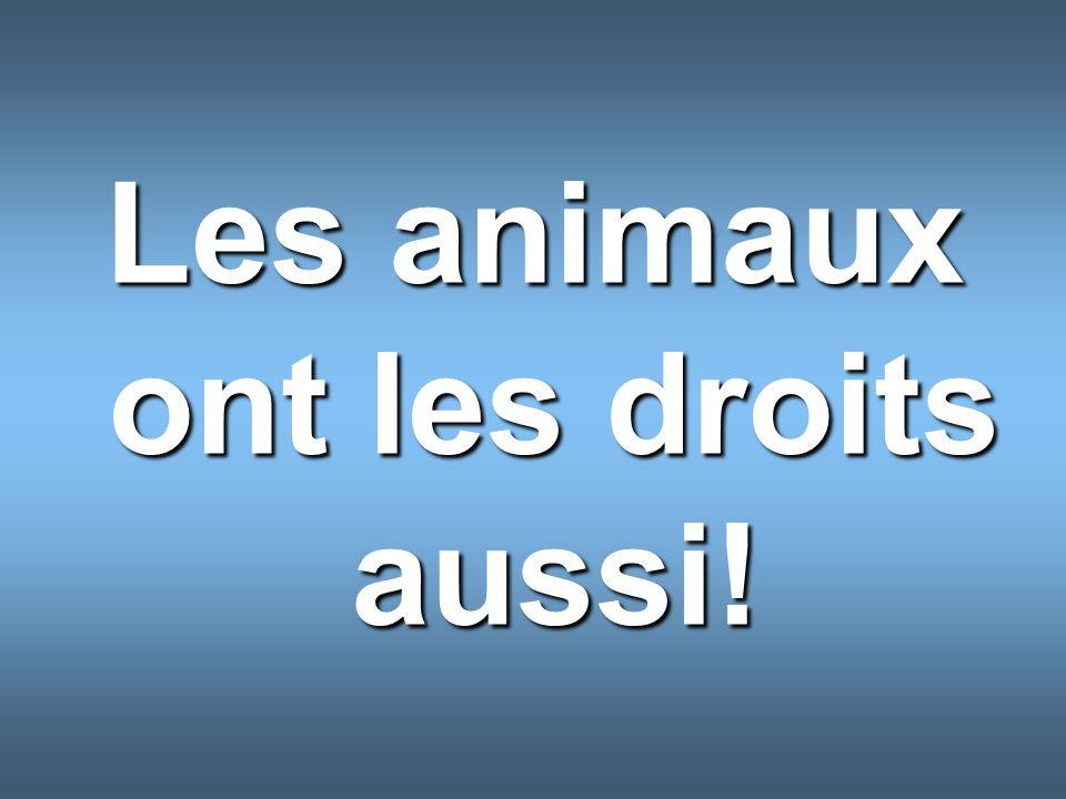 Les animaux ont les droits aussi!