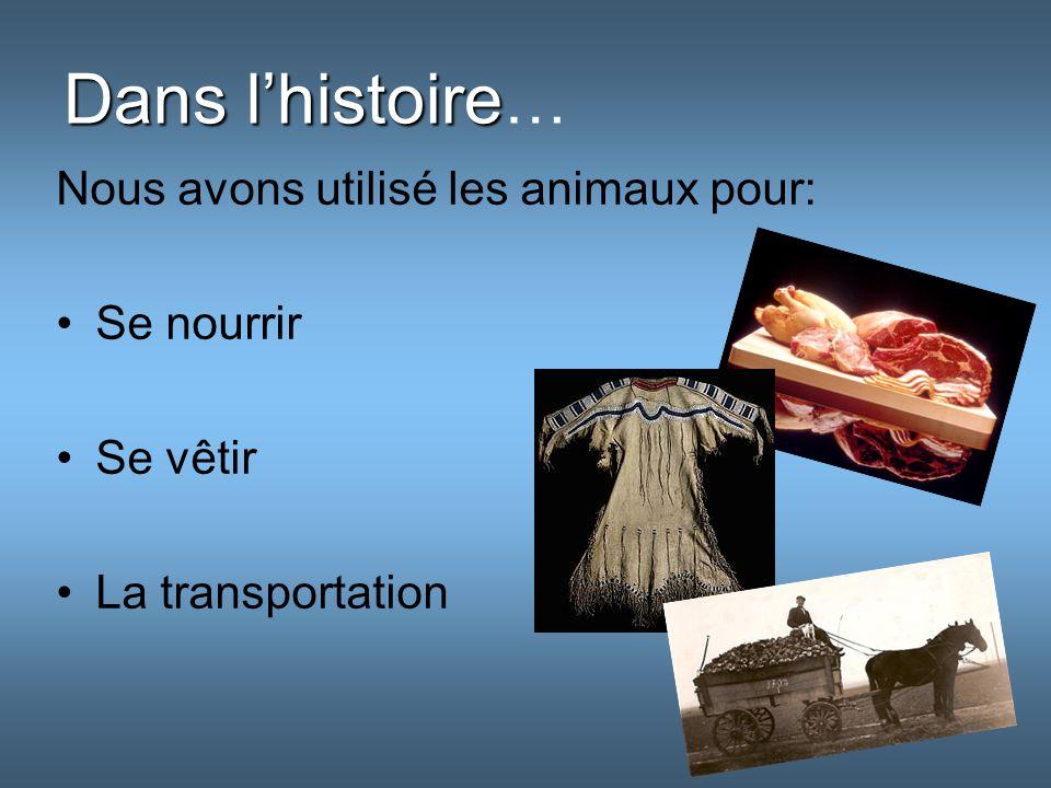 Dans lhistoire Dans lhistoire … Nous avons utilisé les animaux pour: Se nourrir Se vêtir La transportation