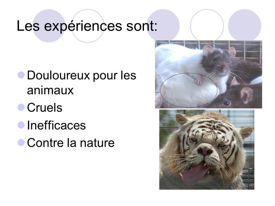 Les expériences sont: Douloureux pour les animaux Cruels Inefficaces Contre la nature