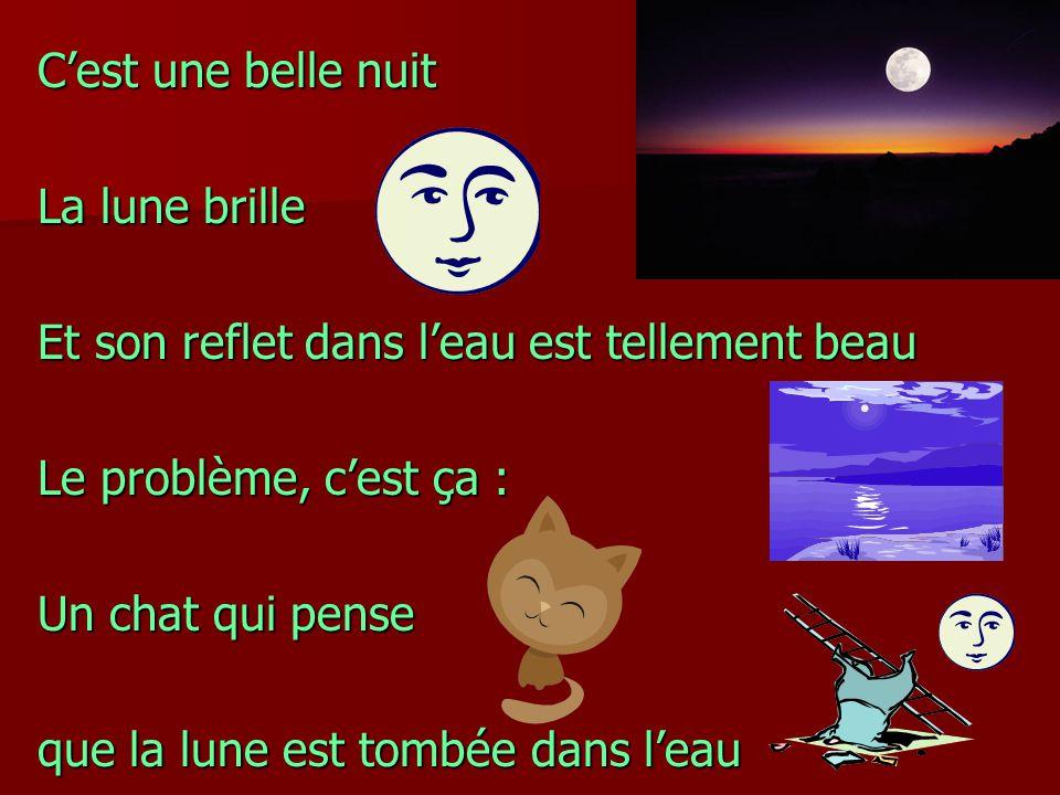 Cest une belle nuit La lune brille Et son reflet dans leau est tellement beau Le problème, cest ça : Un chat qui pense que la lune est tombée dans lea