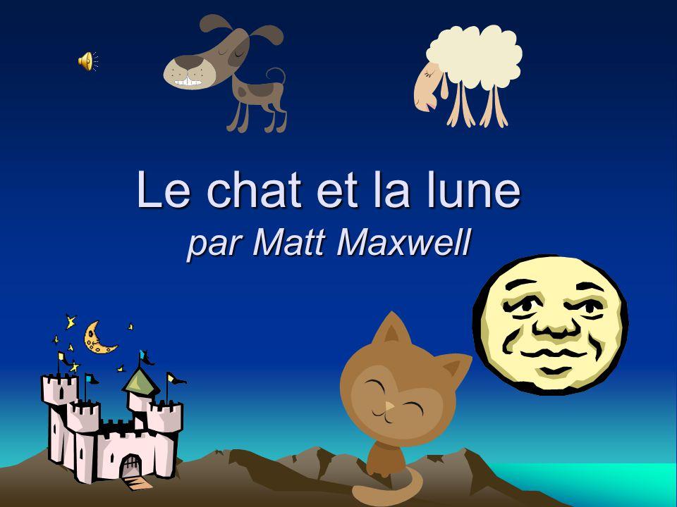 Le chat et la lune par Matt Maxwell