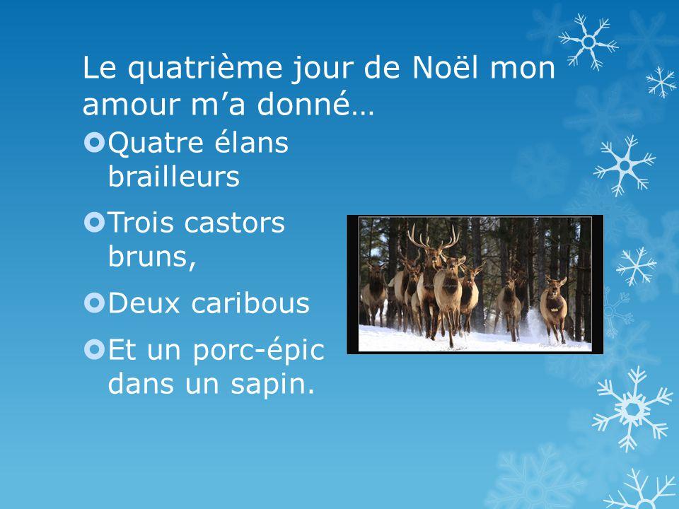 Le quatrième jour de Noël mon amour ma donné… Quatre élans brailleurs Trois castors bruns, Deux caribous Et un porc-épic dans un sapin.