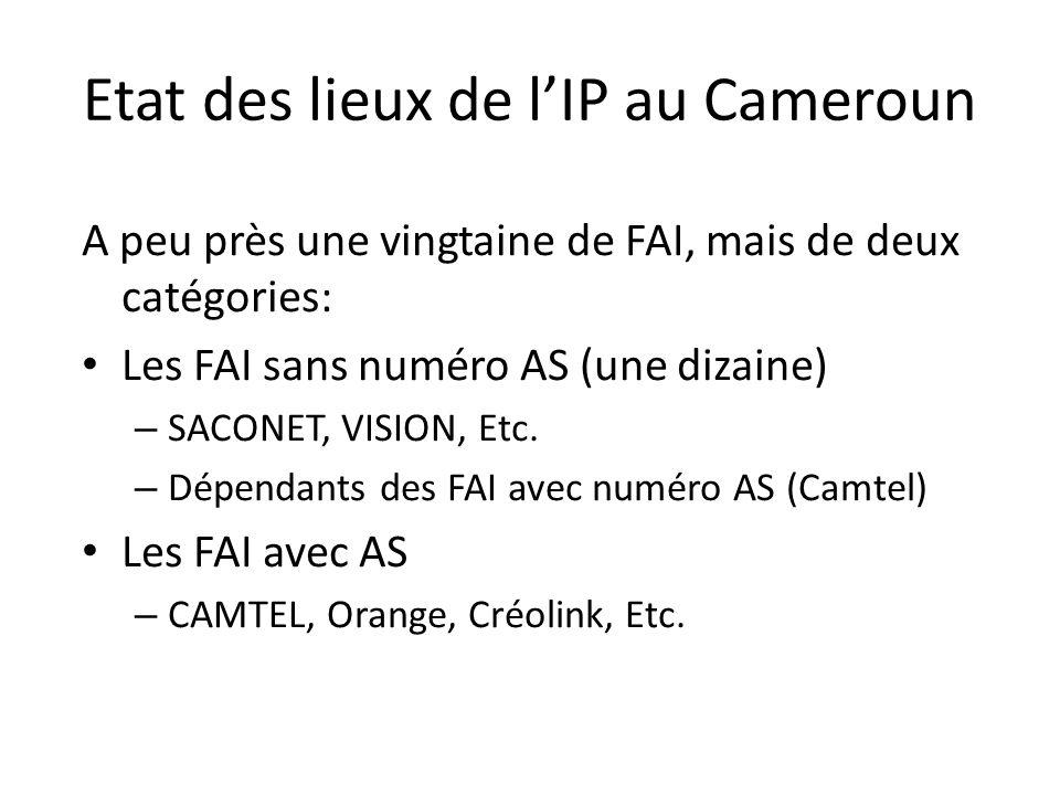 Etat des lieux de lIP au Cameroun A peu près une vingtaine de FAI, mais de deux catégories: Les FAI sans numéro AS (une dizaine) – SACONET, VISION, Etc.