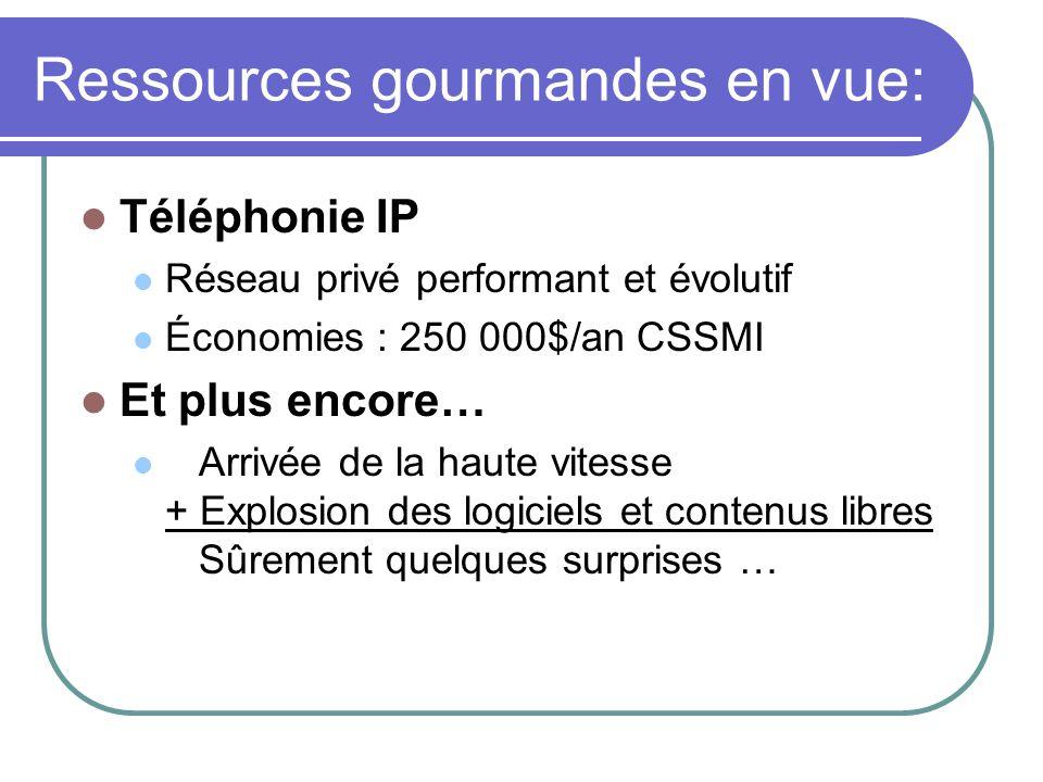 Ressources gourmandes en vue: Téléphonie IP Réseau privé performant et évolutif Économies : 250 000$/an CSSMI Et plus encore… Arrivée de la haute vite