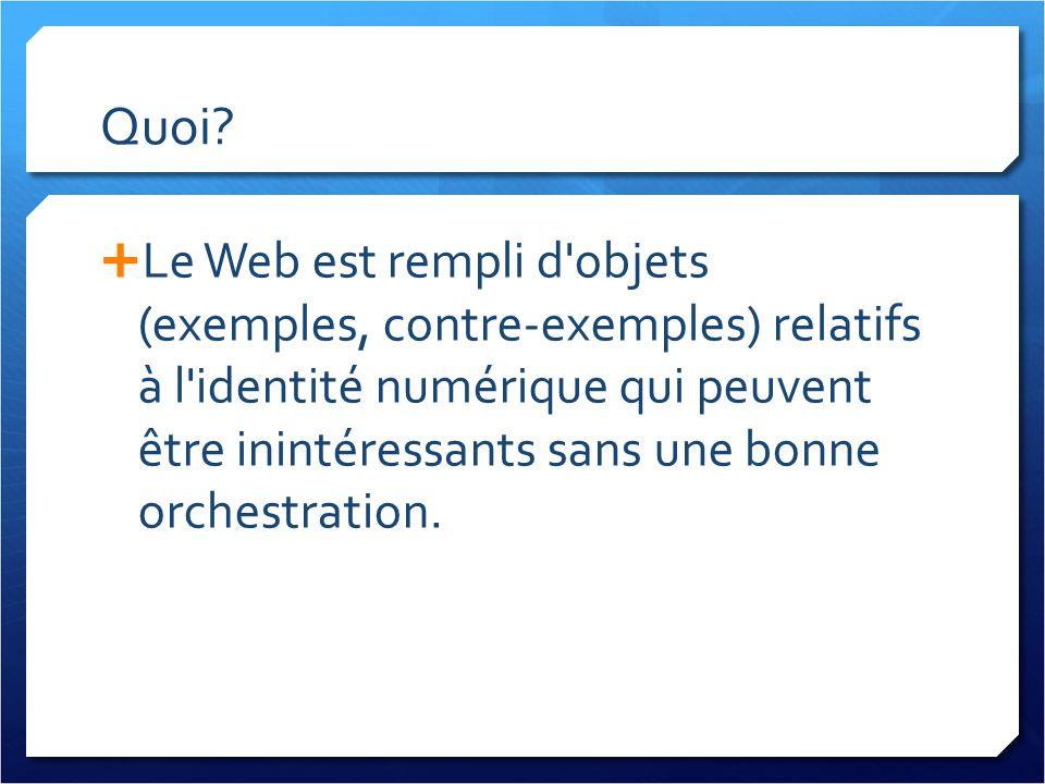 Quoi? Le Web est rempli d'objets (exemples, contre-exemples) relatifs à l'identité numérique qui peuvent être inintéressants sans une bonne orchestrat