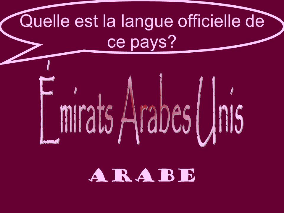 Quelle est la langue officielle de ce pays arabe