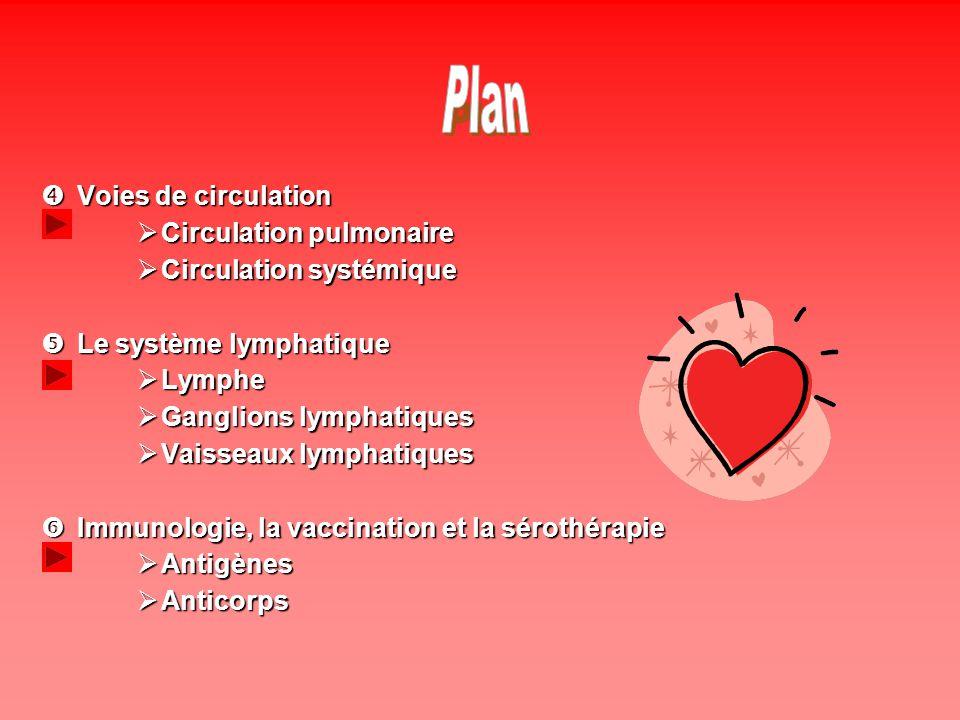 Les artères permettent au sang de séloigner du cœur et daller rejoindre les organes.