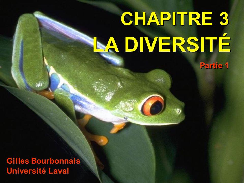 CHAPITRE 3 LA DIVERSITÉ Gilles Bourbonnais Université Laval Partie 1