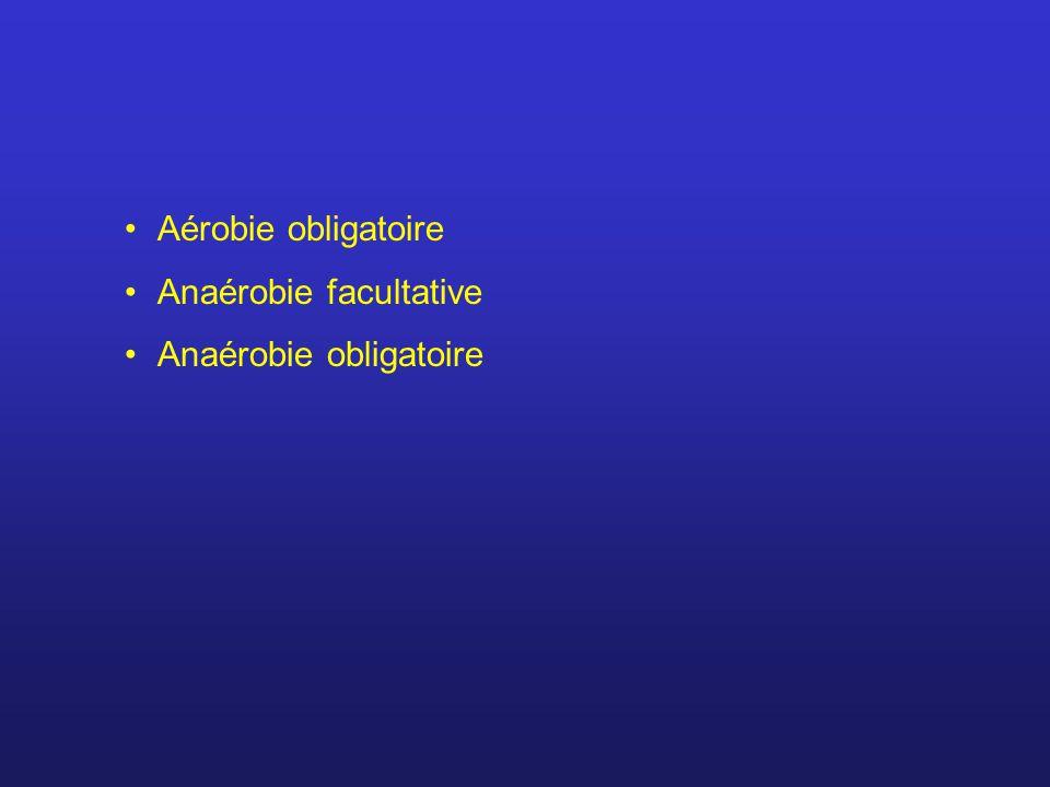 Aérobie obligatoire Anaérobie facultative Anaérobie obligatoire
