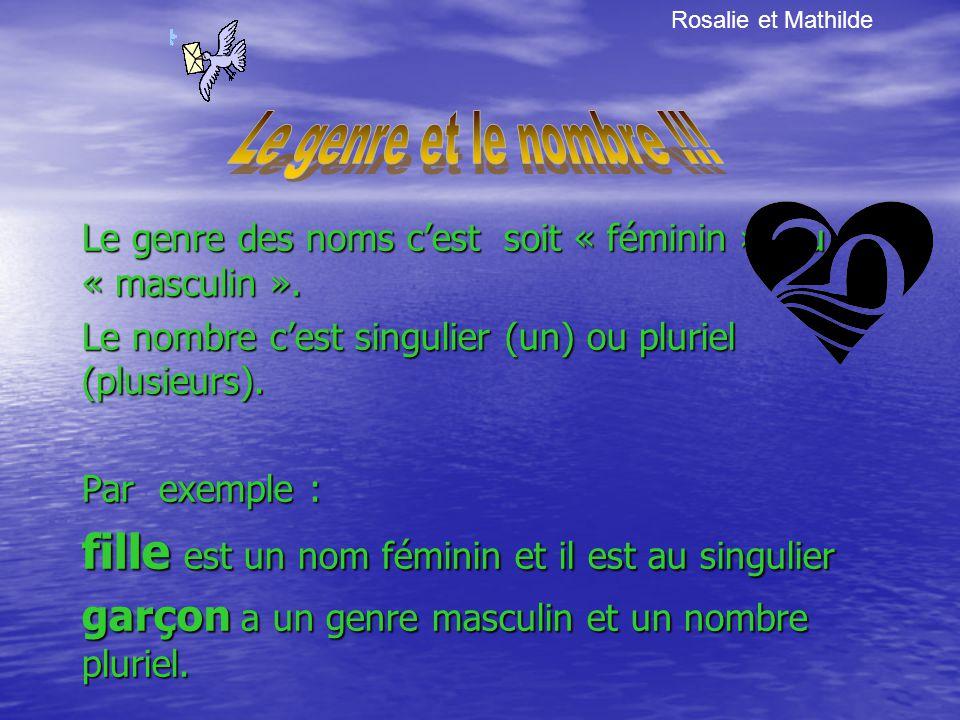 Le genre des noms cest soit « féminin » ou « masculin ».