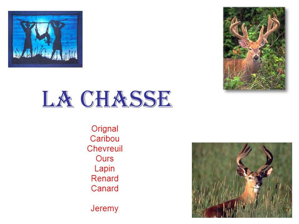 la chasse Les chevreuils, Les corneilles… Geneviève