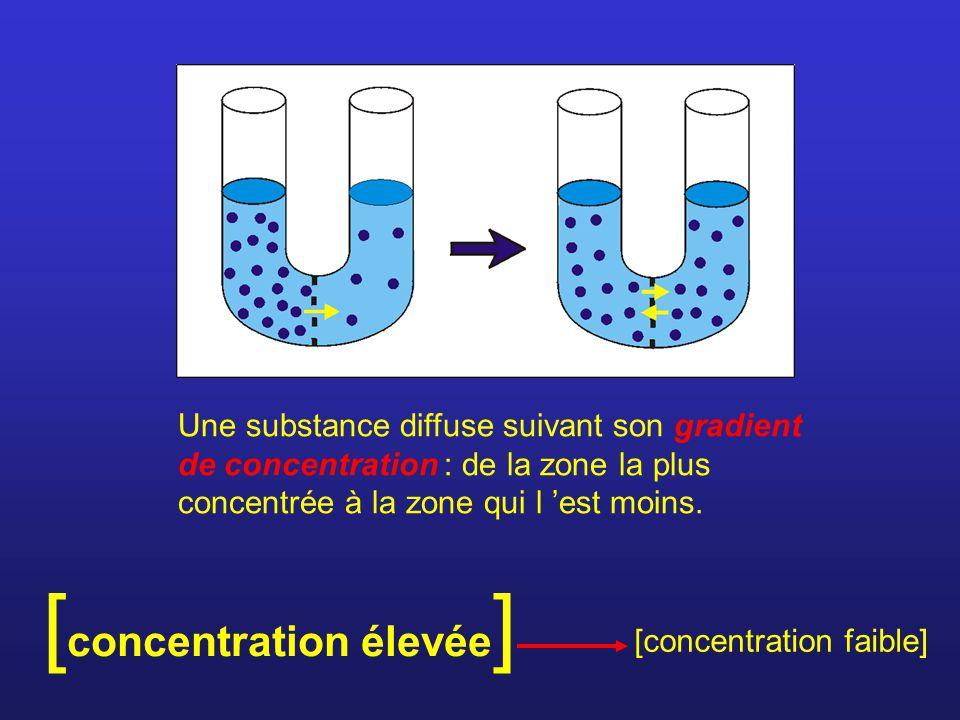 Une substance diffuse suivant son gradient de concentration : de la zone la plus concentrée à la zone qui l est moins.